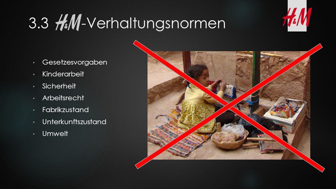 3.3 -Verhaltungsnormen Gesetzesvorgaben Kinderarbeit Sicherheit Arbeitsrecht Fabrikzustand Unterkunftszustand Umwelt