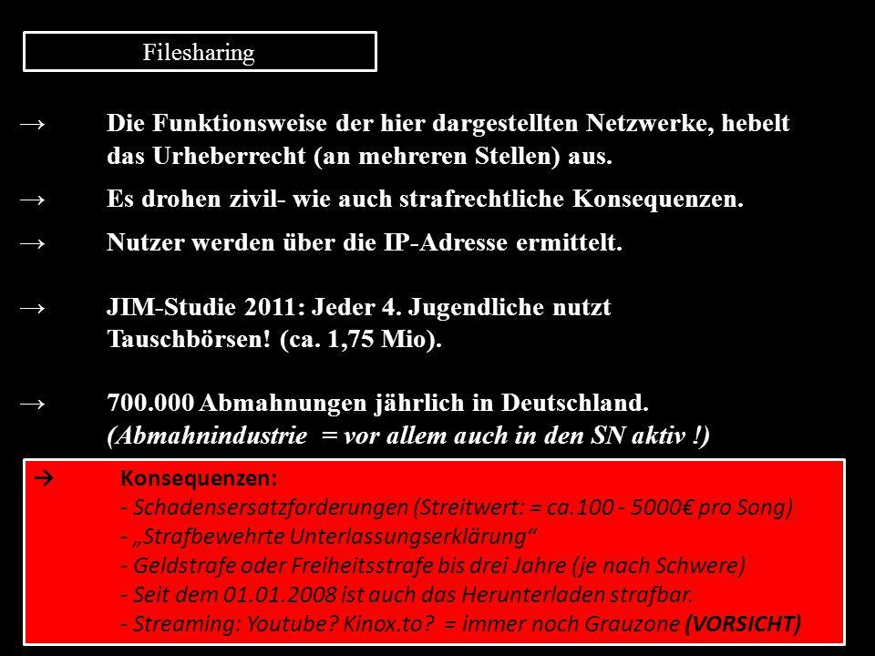 Filesharing → Die Funktionsweise der hier dargestellten Netzwerke, hebelt das Urheberrecht (an mehreren Stellen) aus. → Es drohen zivil- wie auch stra