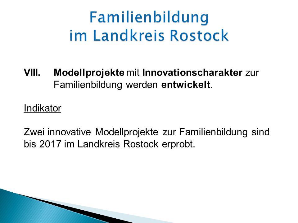 VIII.Modellprojekte mit Innovationscharakter zur Familienbildung werden entwickelt.