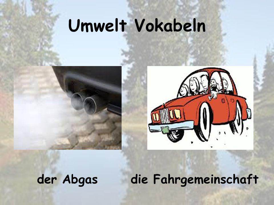 Umwelt Vokabeln die Fahrgemeinschaftder Abgas