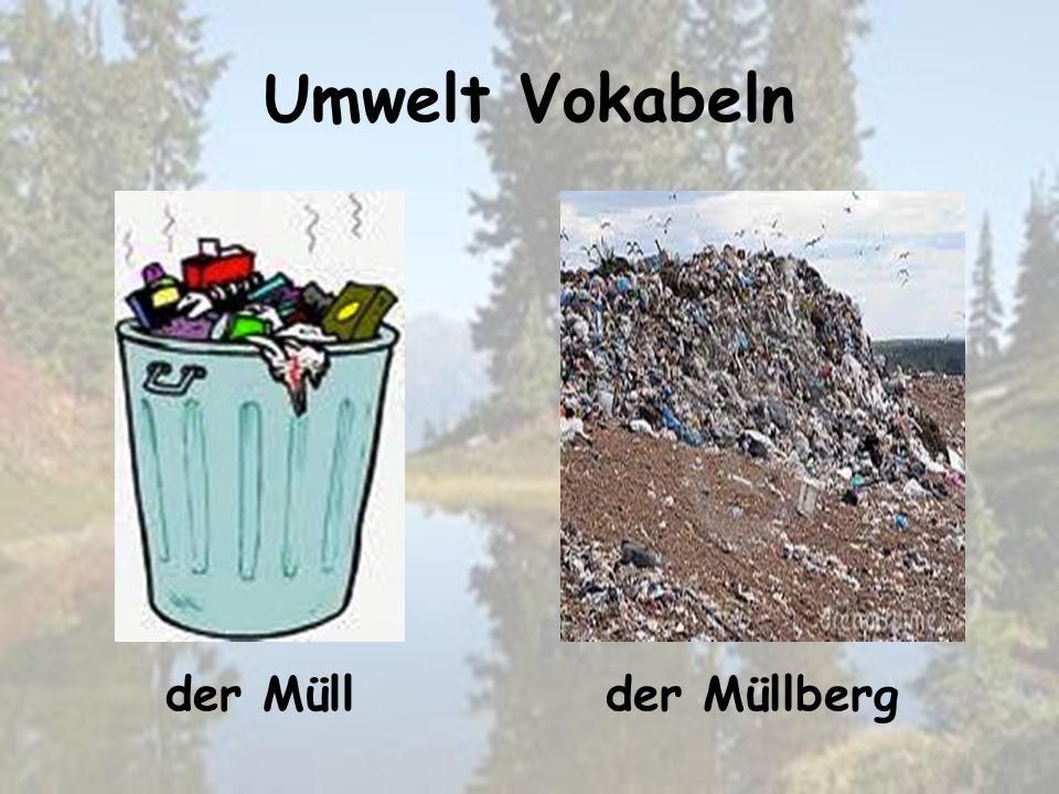 Umwelt Vokabeln der Müllbergder Müll