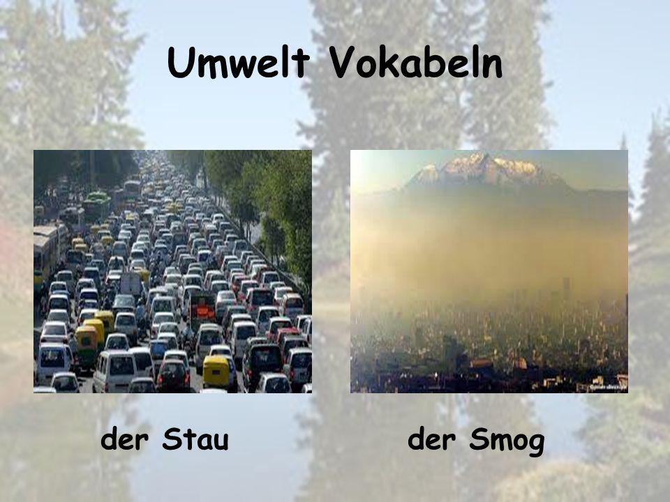 Umwelt Vokabeln der Smogder Stau