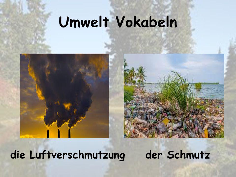 Umwelt Vokabeln der Schmutzdie Luftverschmutzung