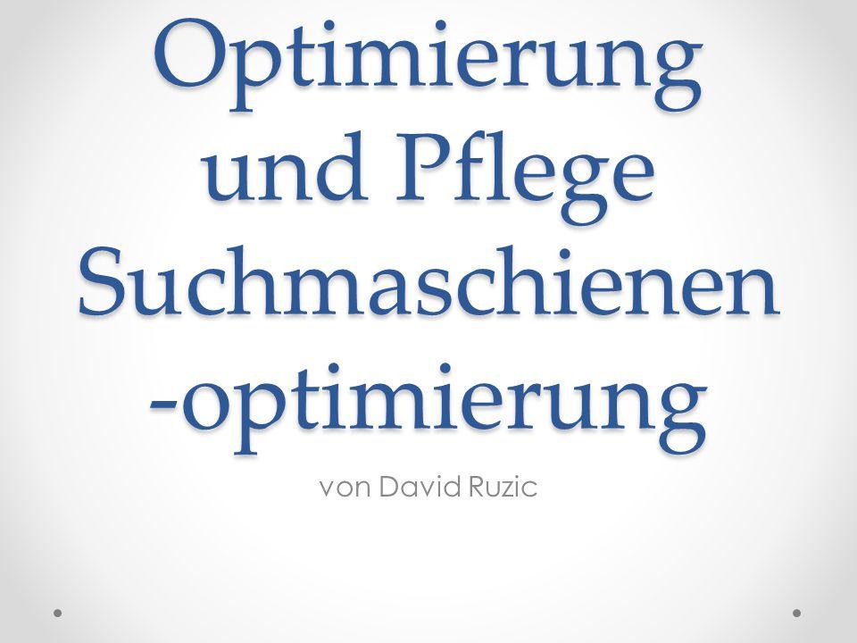 Optimierung und Pflege Suchmaschienen -optimierung von David Ruzic