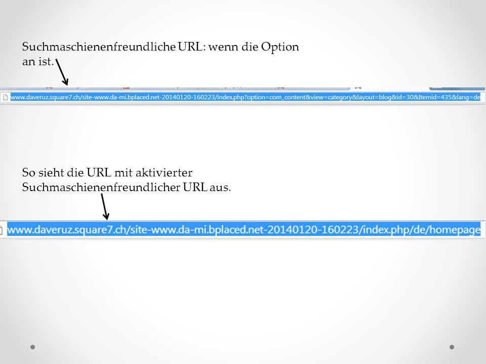 Suchmaschienenfreundliche URL: wenn die Option an ist.