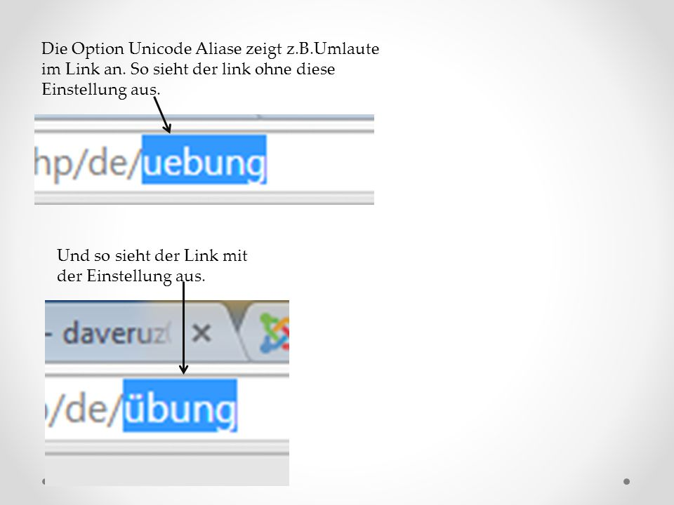 Die Option Unicode Aliase zeigt z.B.Umlaute im Link an.