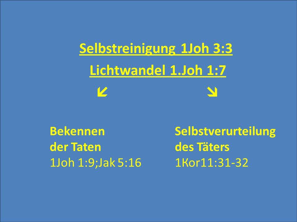 Selbstreinigung 1Joh 3:3 Lichtwandel 1.Joh 1:7   Bekennen der Taten 1Joh 1:9;Jak 5:16 Selbstverurteilung des Täters 1Коr11:31-32