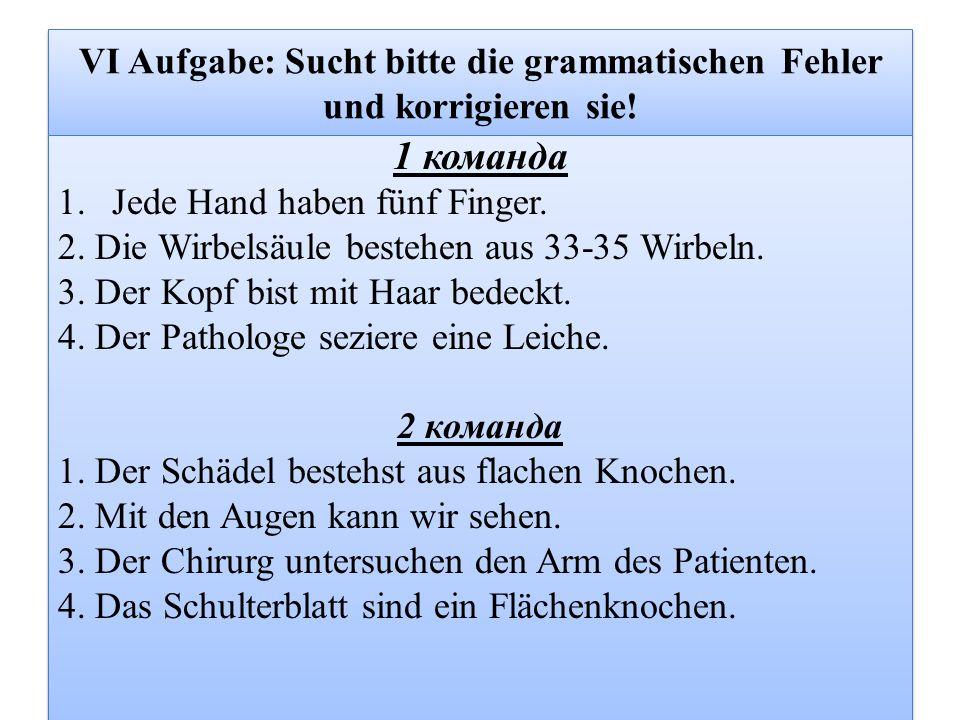 VI Aufgabe: Sucht bitte die grammatischen Fehler und korrigieren sie.