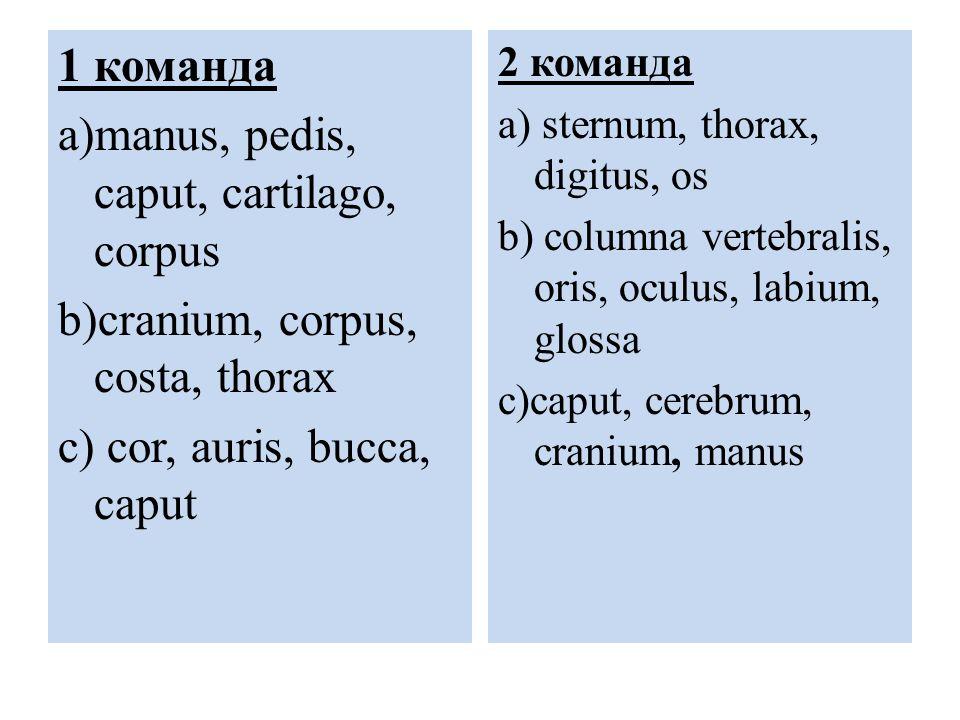 1 команда a)manus, pedis, caput, cartilago, corpus b)cranium, corpus, costa, thorax c) cor, auris, bucca, caput 2 команда a) sternum, thorax, digitus, os b) columna vertebralis, oris, oculus, labium, glossa c)caput, cerebrum, cranium, manus