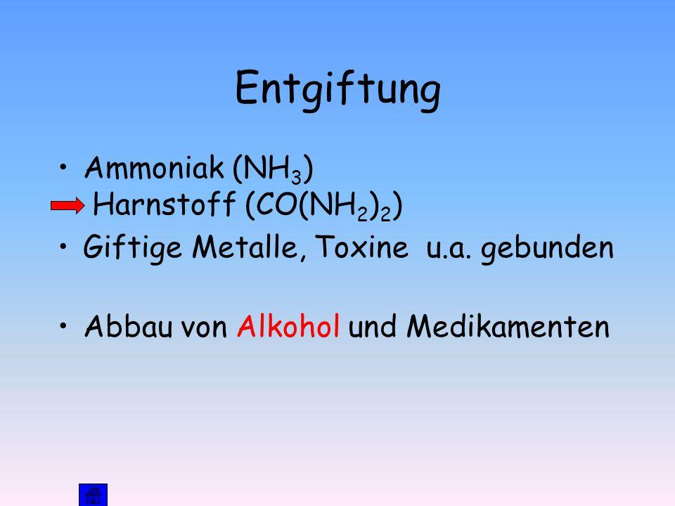 Entgiftung Ammoniak (NH 3 ) Harnstoff (CO(NH 2 ) 2 ) Giftige Metalle, Toxine u.a.