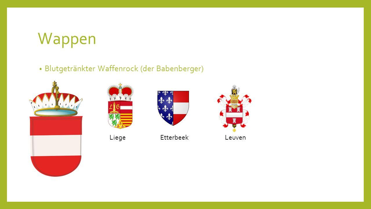 Wappen Blutgetränkter Waffenrock (der Babenberger) LiegeEtterbeekLeuven