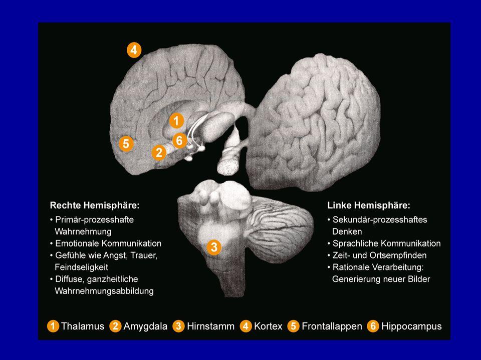 Psychodynamik des Typ 2 Traumas Psychoanalytisches Modell: - Beziehungstraumatisierung durch Gewalt, Vernachlässigung oder Missbrauch..