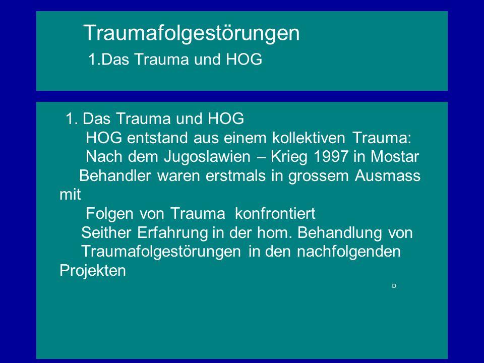 Traumafolgestörungen 1.Das Trauma und HOG 1. Das Trauma und HOG HOG entstand aus einem kollektiven Trauma: Nach dem Jugoslawien – Krieg 1997 in Mostar