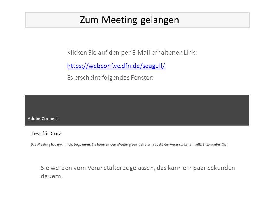 Klicken Sie auf den per E-Mail erhaltenen Link: Es erscheint folgendes Fenster: Sie werden vom Veranstalter zugelassen, das kann ein paar Sekunden dauern.