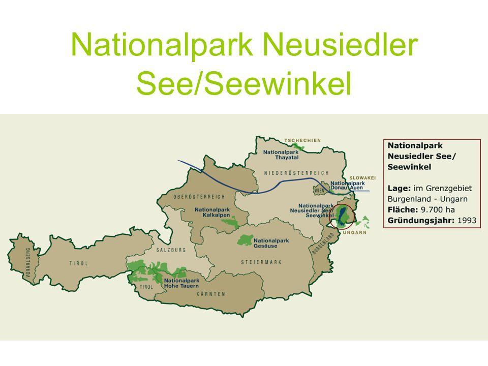 Finanzierung/Steuerung/Organisation Trägerorganisation: Nationalparkgesellschaft Neusiedler See –Seewinkel Sitz der Verwaltung in Apleton Finanzierung  50% Bund  50% Land Burgenland Politische Steuerung über Vorstand (7 Mitglieder ernannt von LR), bzw.