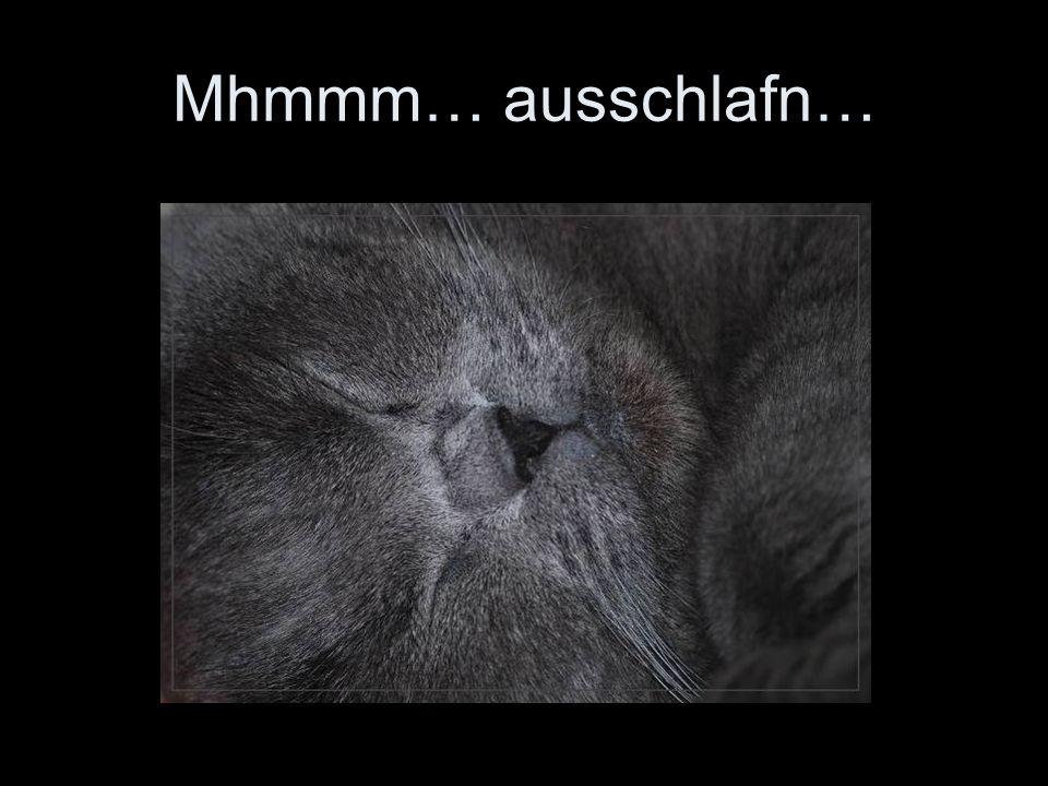 Mhmmm… ausschlafn…