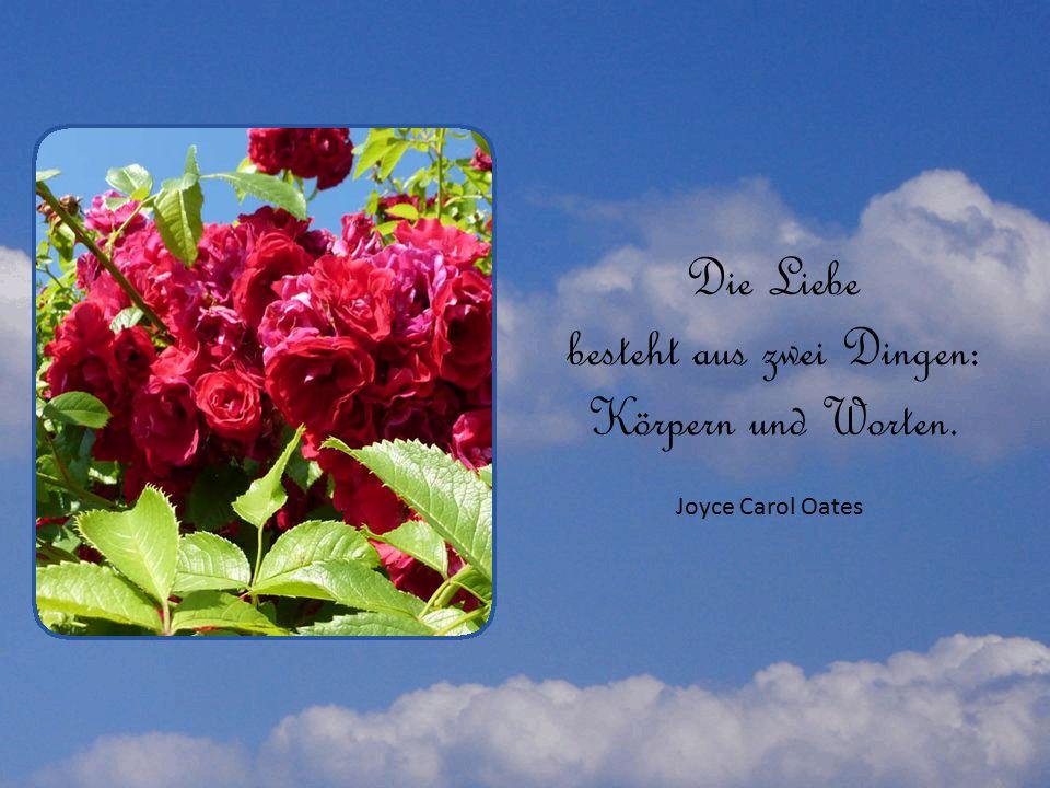 Die Liebe besteht aus zwei Dingen: Körpern und Worten. Joyce Carol Oates