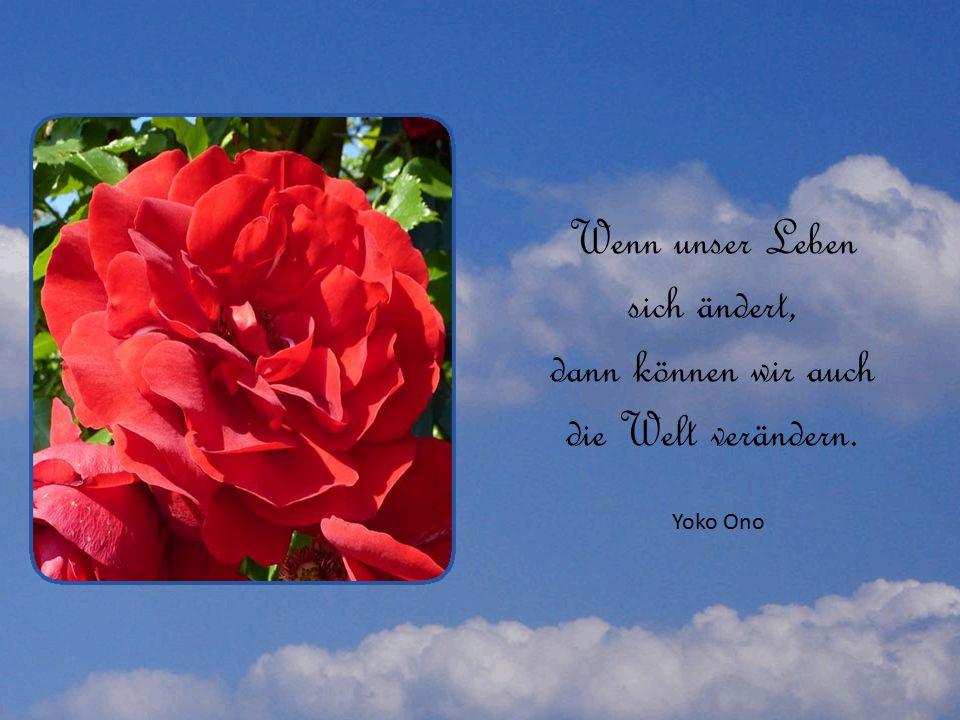 Wenn unser Leben sich ändert, dann können wir auch die Welt verändern. Yoko Ono