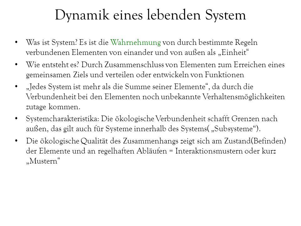 """Dynamik eines lebenden System Was ist System? Es ist die Wahrnehmung von durch bestimmte Regeln verbundenen Elementen von einander und von außen als """""""