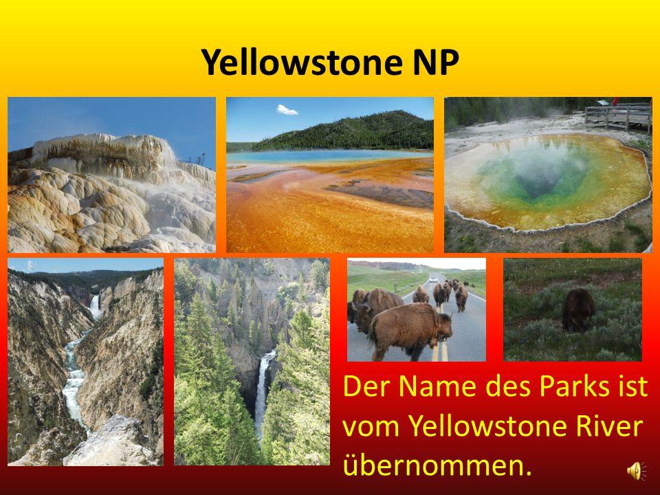 Yellowstone NP Erholung war angesagt.