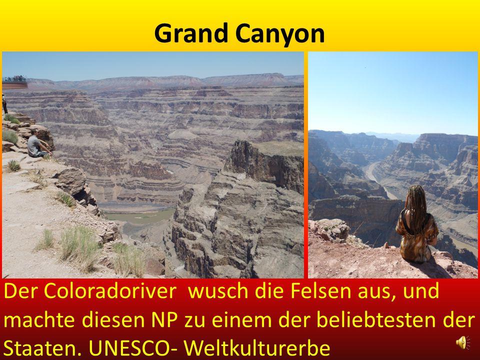 Grand Canyon Der Coloradoriver wusch die Felsen aus, und machte diesen NP zu einem der beliebtesten der Staaten.