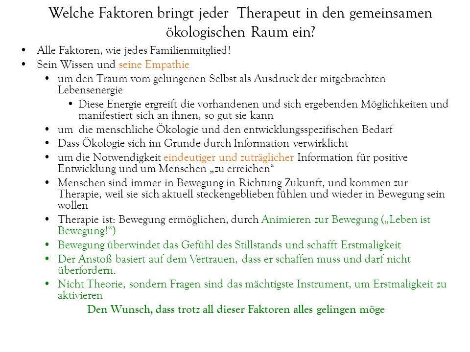 Welche Faktoren bringt jeder Therapeut in den gemeinsamen ökologischen Raum ein.