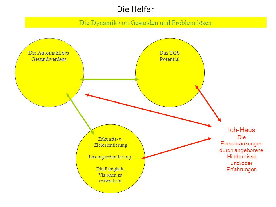 Die Automatik des Gesundwerdens Das TGS Potential Zukunfts- u.