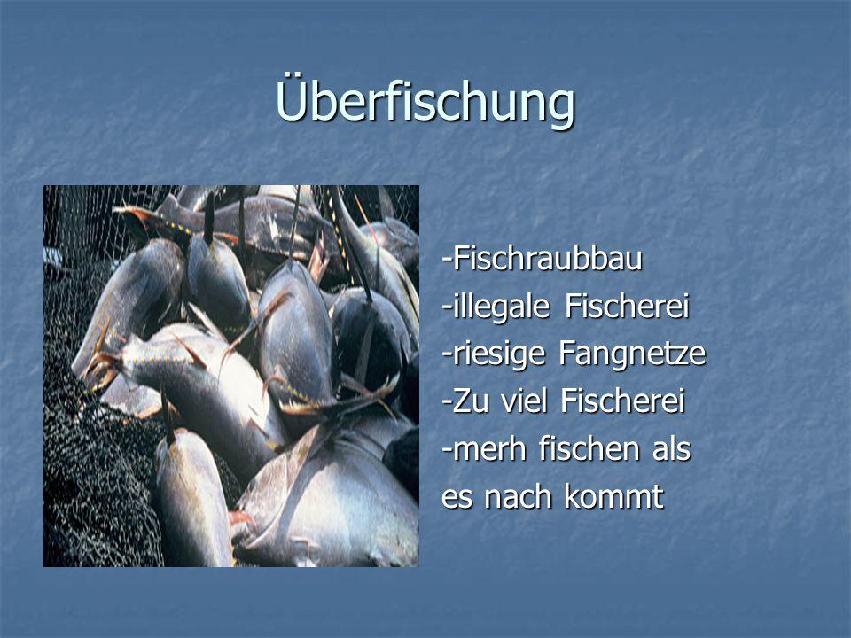 Aquakultur Befassen sich mit fische, Muscheln, krebsen und Algen Befassen sich mit fische, Muscheln, krebsen und Algen 1990 und 2003 jährliche Wachstum 10 %.