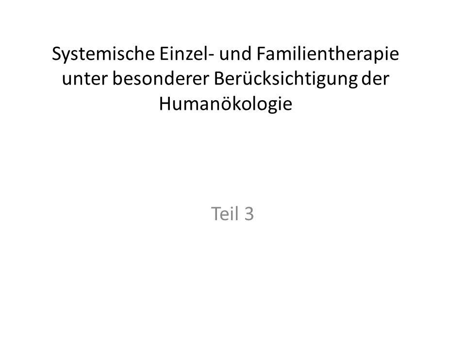 Systemische Einzel- und Familientherapie unter besonderer Berücksichtigung der Humanökologie Teil 3