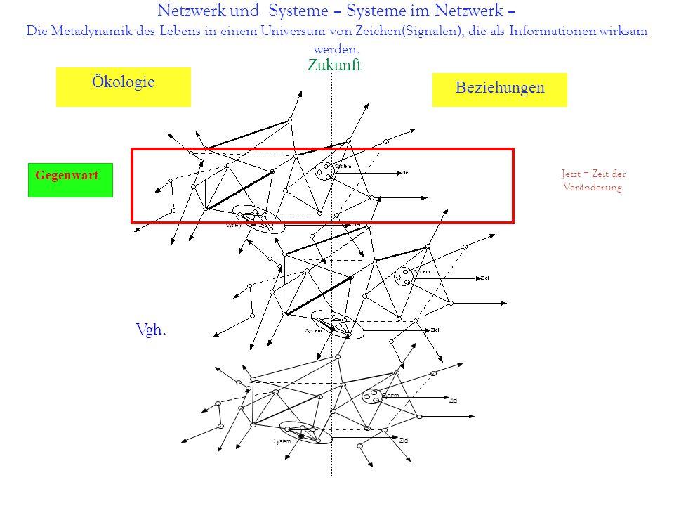 Netzwerk und Systeme – Systeme im Netzwerk – Die Metadynamik des Lebens in einem Universum von Zeichen(Signalen), die als Informationen wirksam werden
