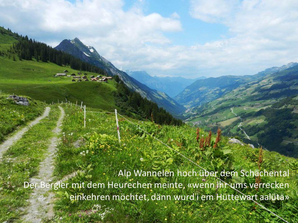 Alp Wannelen hoch über dem Schächental Der Bergler mit dem Heurechen meinte, «wenn ihr ums verrecken einkehren möchtet, dänn wurd i em Hüttewart aalüt