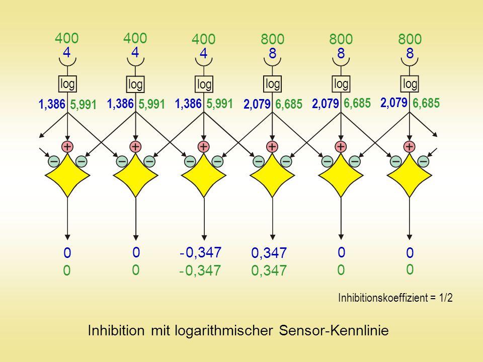 Amakrinzelle Horizontalzelle Ganglienzelle Bipolarzelle Stäbchen (Dämmerungssehen) Zapfen (Farbsehen) Querverschaltung der Netzhaut