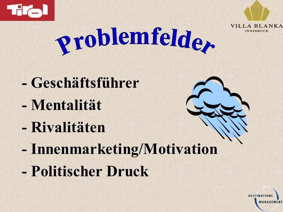 - Geschäftsführer - Mentalität - Rivalitäten - Innenmarketing/Motivation - Politischer Druck
