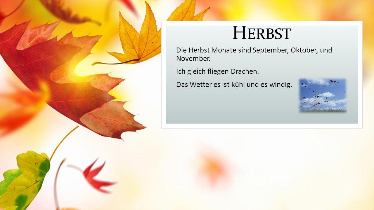 H ERBST Die Herbst Monate sind September, Oktober, und November.