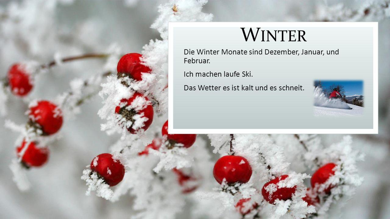 W INTER Die Winter Monate sind Dezember, Januar, und Februar.