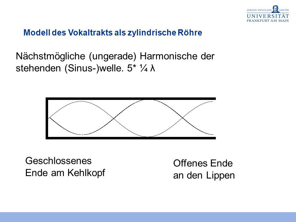 Modell des Vokaltrakts als zylindrische Röhre Geschlossenes Ende am Kehlkopf Offenes Ende an den Lippen Nächstmögliche (ungerade) Harmonische der steh