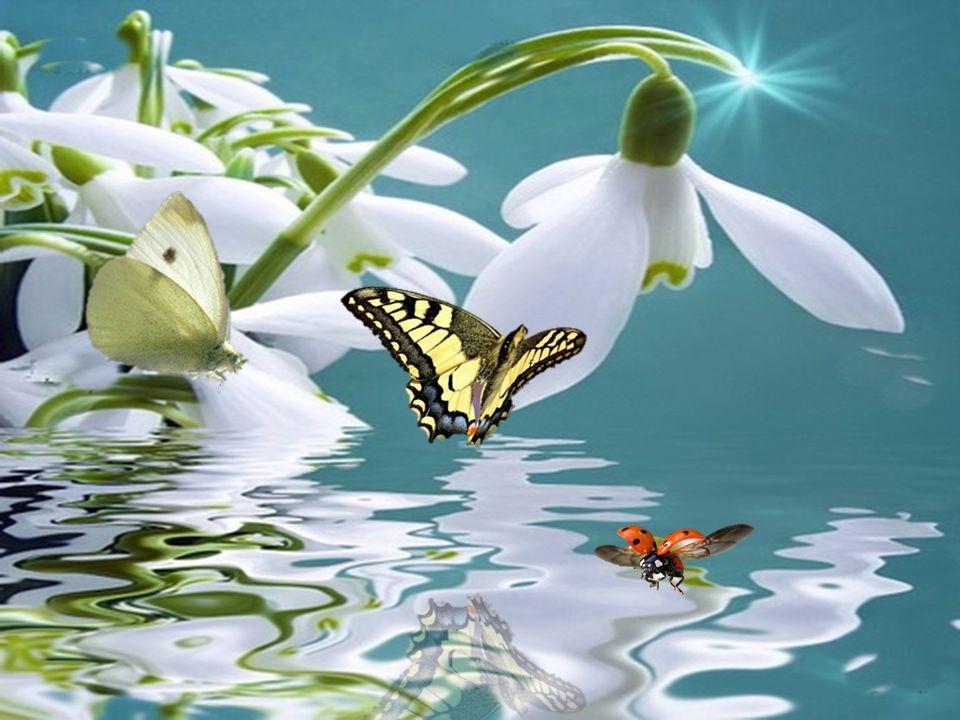 Freunde die sich gut verstehen, in guten und in schlechten Tagen, und immer zueinander stehen sind wahre Gottesgaben.