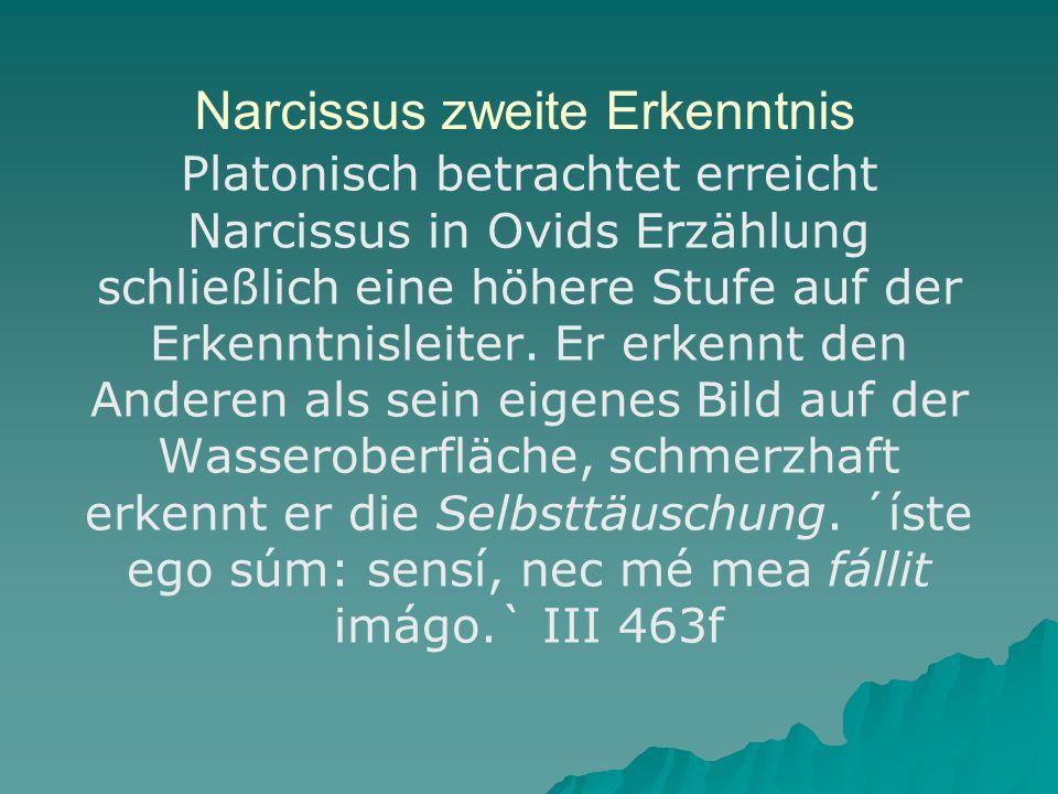 Narcissus zweite Erkenntnis Platonisch betrachtet erreicht Narcissus in Ovids Erzählung schließlich eine höhere Stufe auf der Erkenntnisleiter.