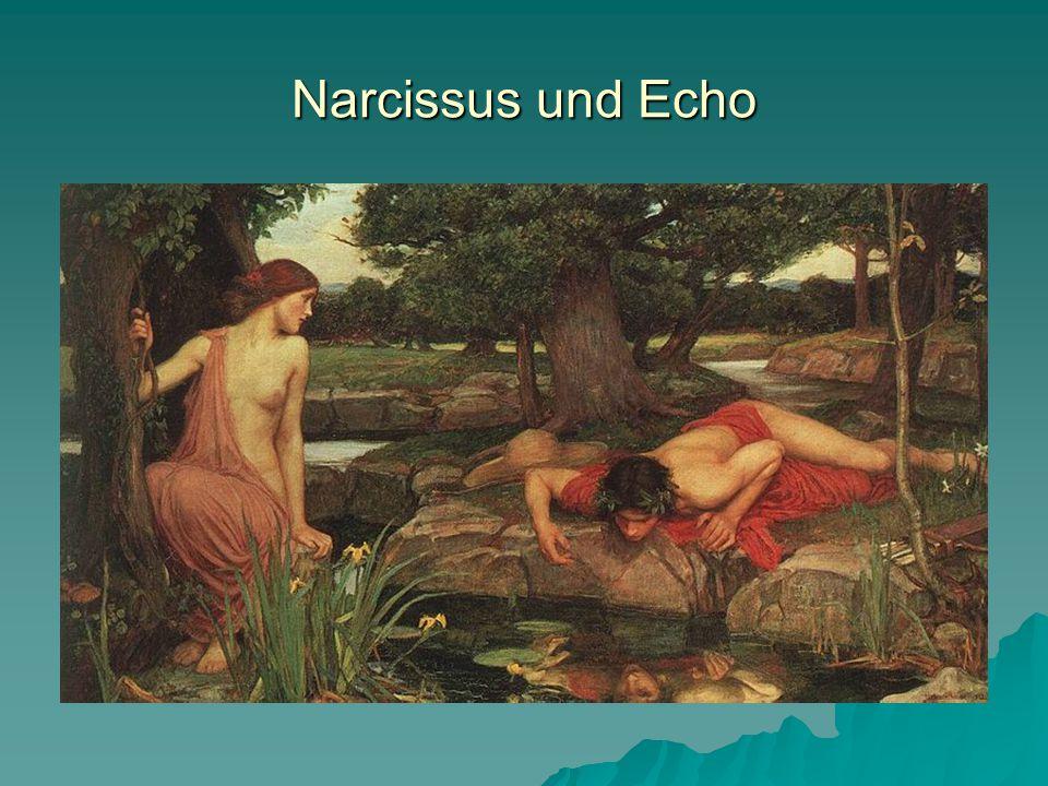 Narcissus erblickt sich selbst