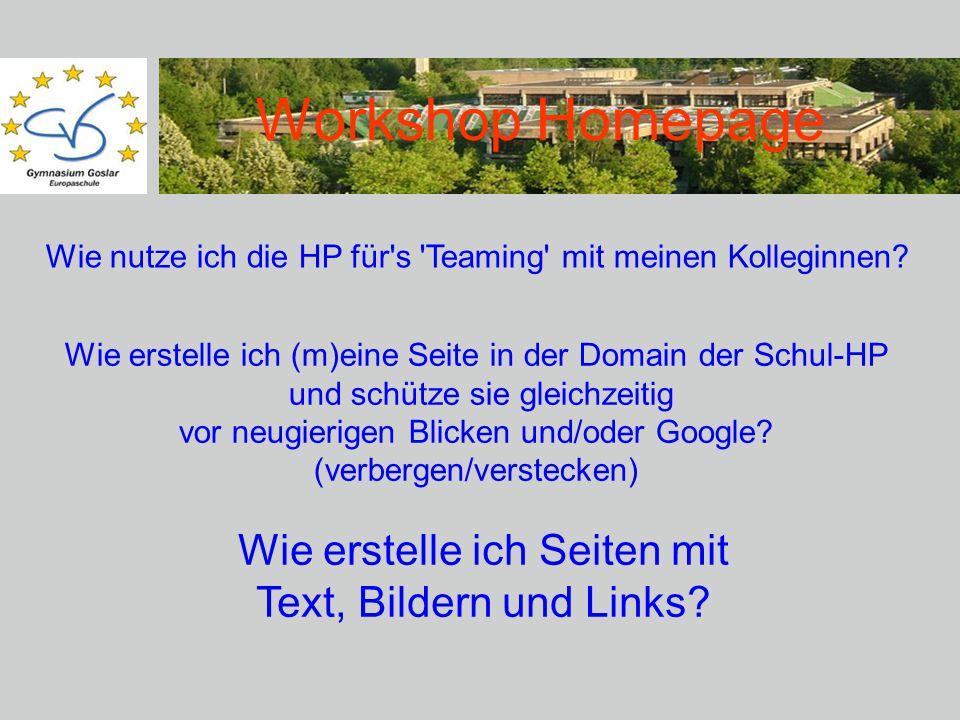 Workshop Homepage Wie erstelle ich (m)eine Seite in der Domain der Schul-HP und schütze sie gleichzeitig vor neugierigen Blicken und/oder Google.