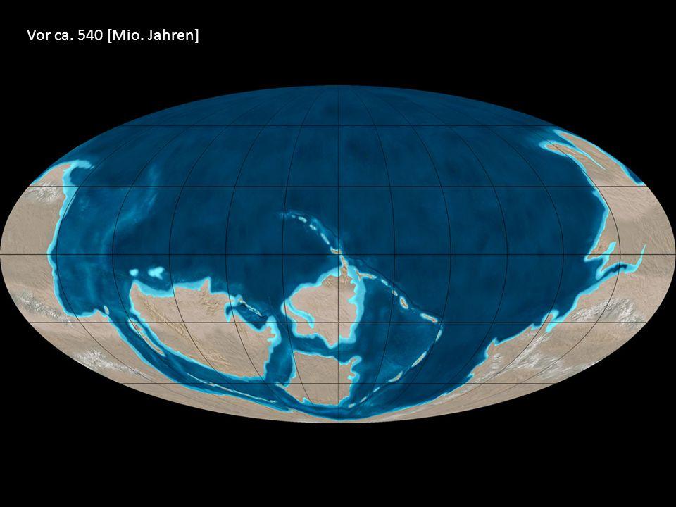 Vor ca. 540 [Mio. Jahren]