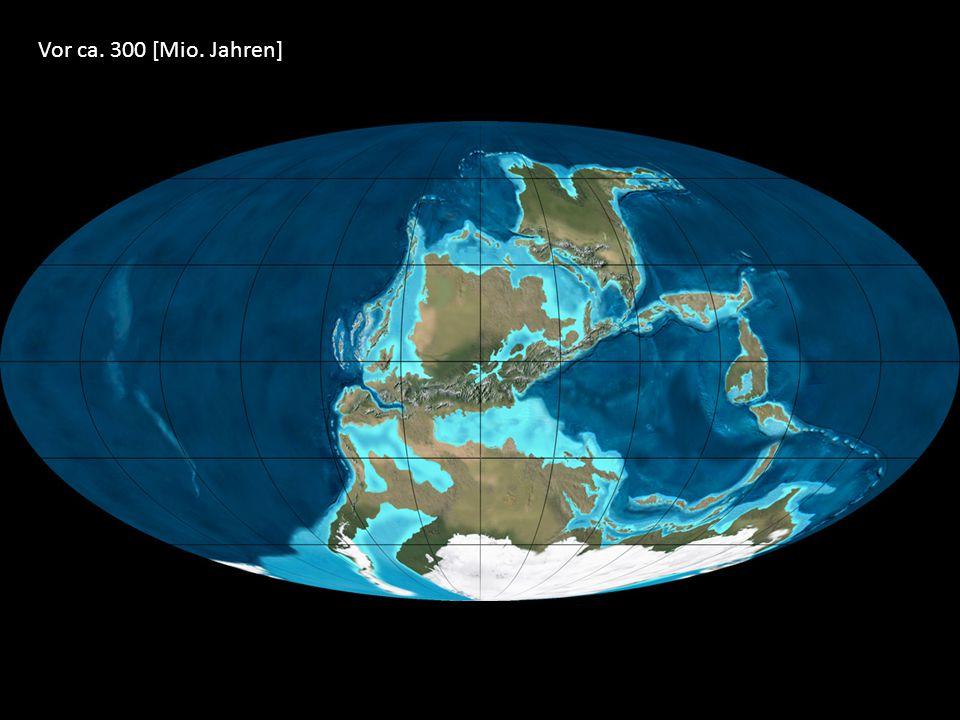 Vor ca. 300 [Mio. Jahren]
