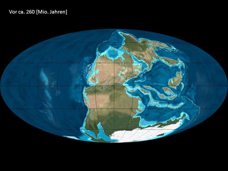 Vor ca. 260 [Mio. Jahren]