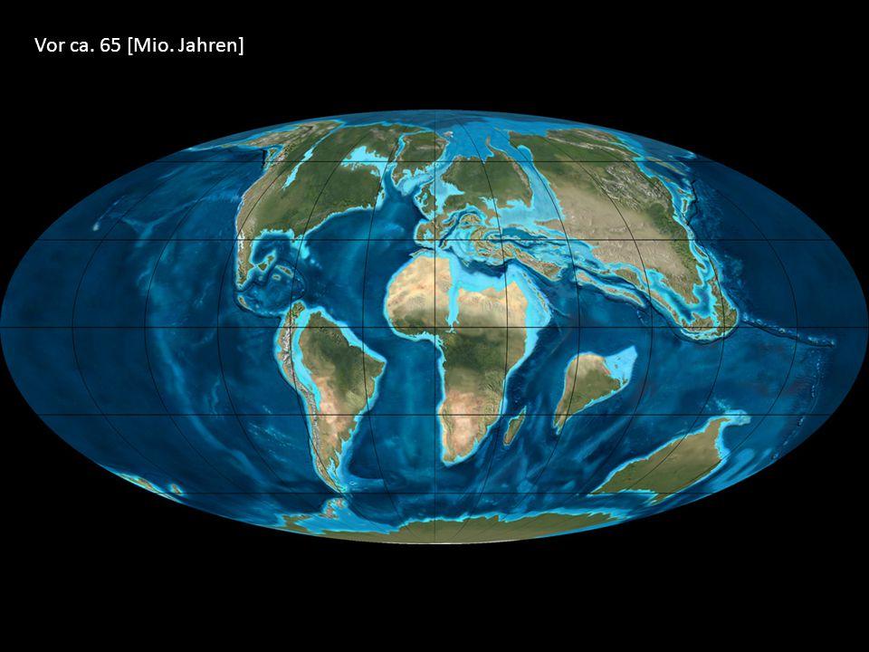Vor ca. 65 [Mio. Jahren]