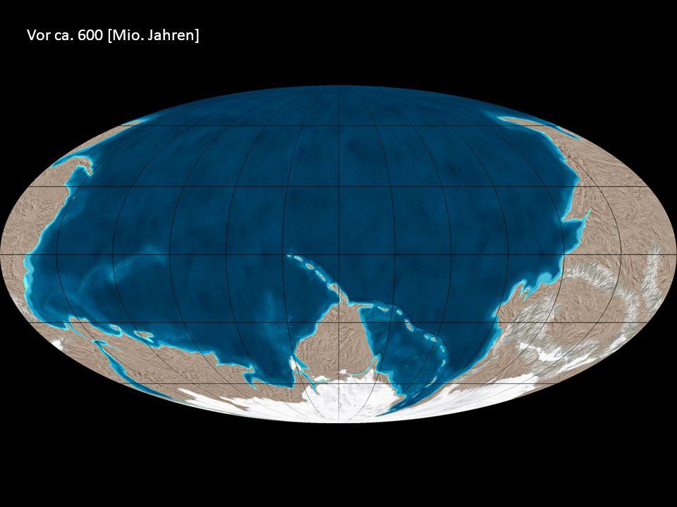 Vor ca. 600 [Mio. Jahren]