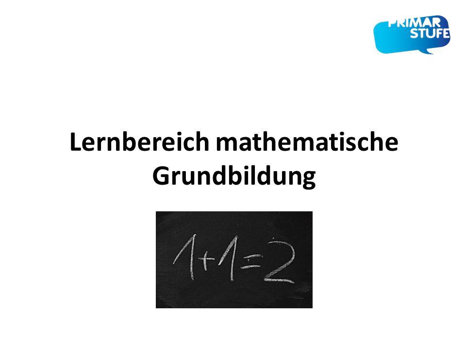 Lernbereich mathematische Grundbildung