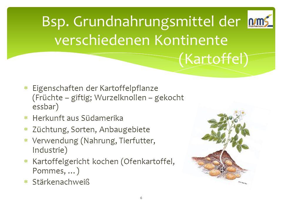 Bsp. Grundnahrungsmittel der verschiedenen Kontinente (Kartoffel)  Eigenschaften der Kartoffelpflanze (Früchte – giftig; Wurzelknollen – gekocht essb