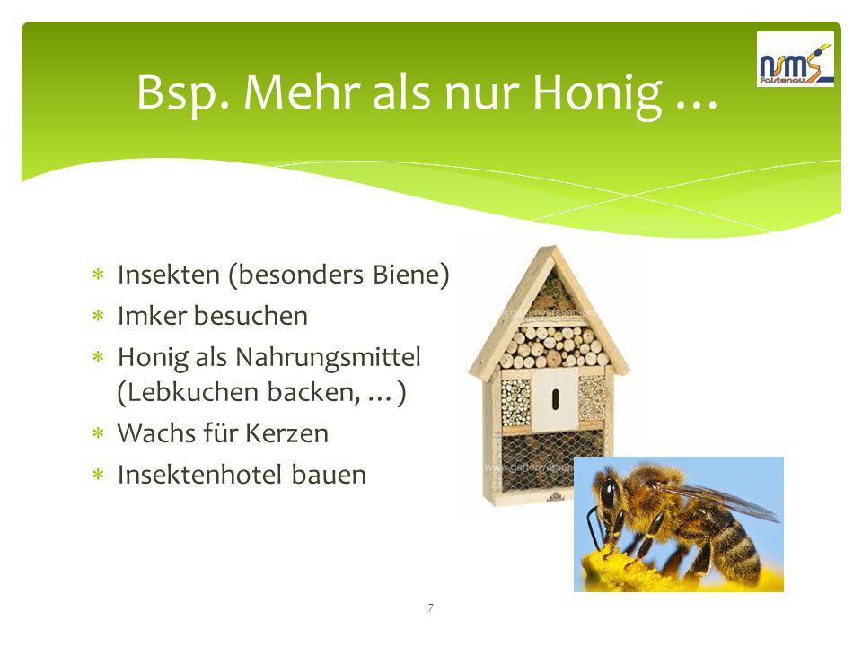  Insekten (besonders Biene)  Imker besuchen  Honig als Nahrungsmittel (Lebkuchen backen, …)  Wachs für Kerzen  Insektenhotel bauen Bsp. Mehr als