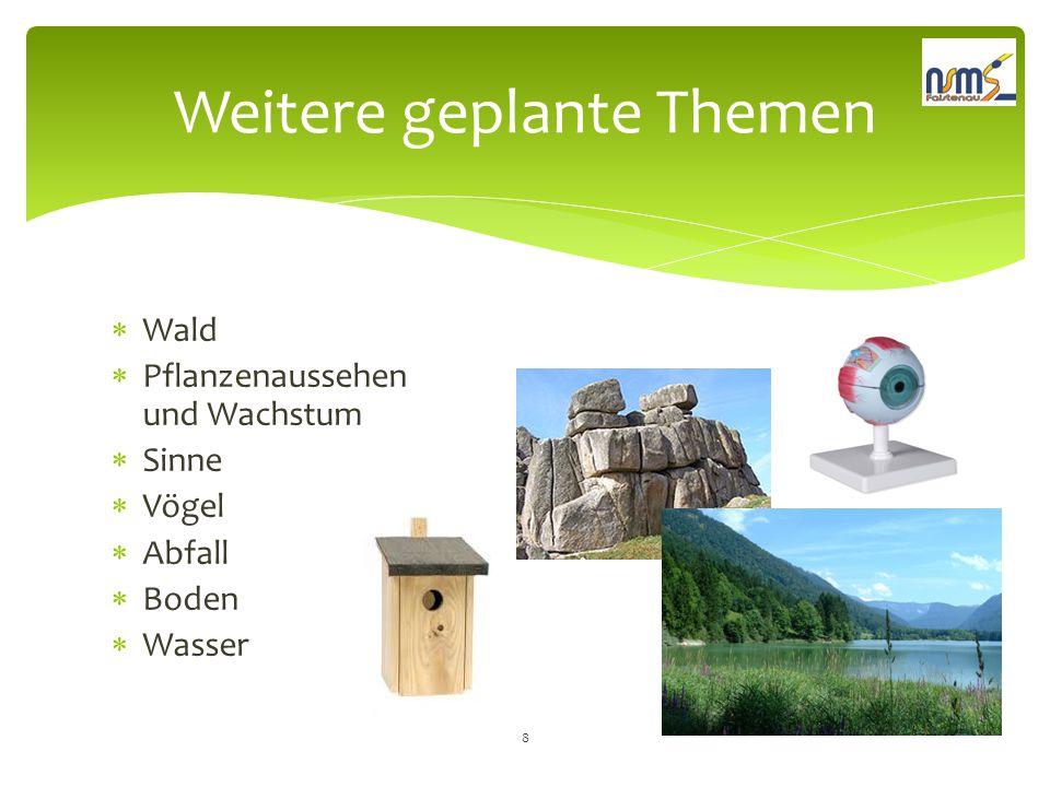  Wald  Pflanzenaussehen und Wachstum  Sinne  Vögel  Abfall  Boden  Wasser Weitere geplante Themen 8