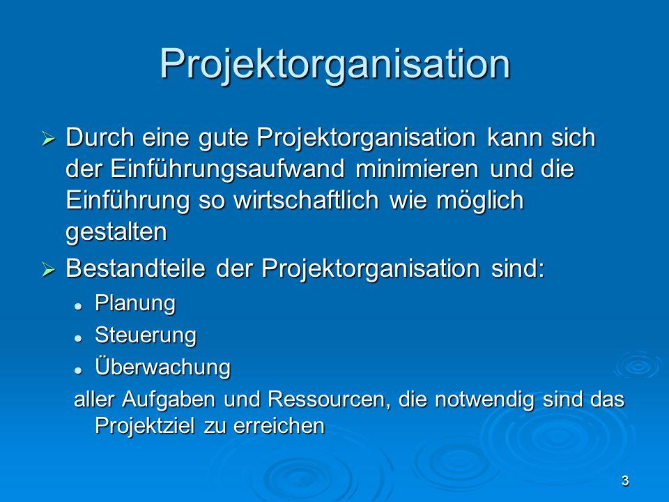 3 Projektorganisation  Durch eine gute Projektorganisation kann sich der Einführungsaufwand minimieren und die Einführung so wirtschaftlich wie mögli
